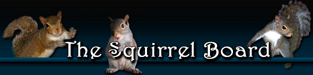The Squirrel Board - Powered by vBulletin
