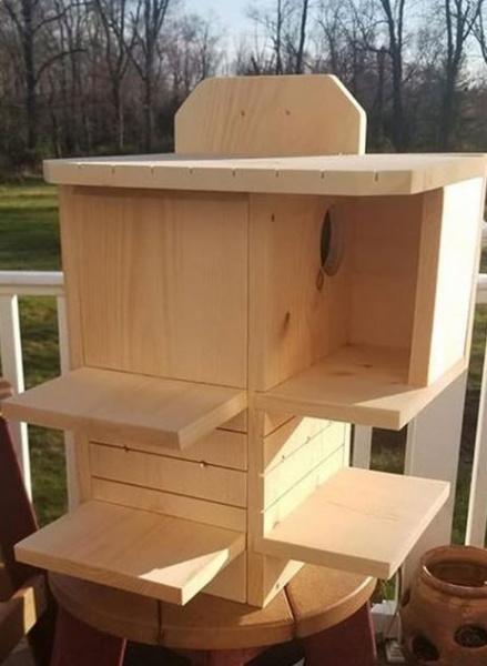 Name:  Buddy's Nest Box.jpg Views: 72 Size:  72.3 KB
