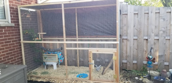 Name:  Buddy's Release Cage1.jpg Views: 155 Size:  83.7 KB