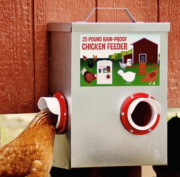 Name:  Chicken Feeder.jpg Views: 40 Size:  148.4 KB