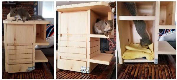 Name:  Buddy's Nest Box_C.jpg Views: 21 Size:  66.6 KB