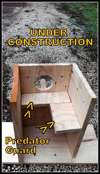 Name:  nest box construction.jpg